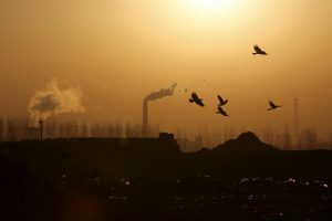 China's new 5-year plan shows a slow start on climate plans