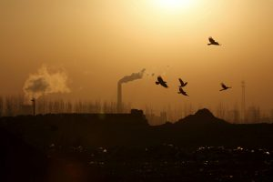 Pandemic Recovery to Push Emissions to 'All-Time High'